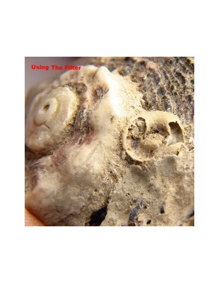 Lente de aproximación macro +10 rosca 49 mm